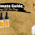 Immune Stimulators for Dogs & Cats