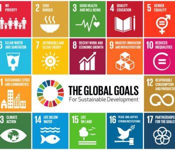 SDGs-GlobalGoalsForSustainableDevelopment-05-1024x820