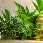 The Effectivity, Benefits, And Side Effects of CBD Oil For Sleep