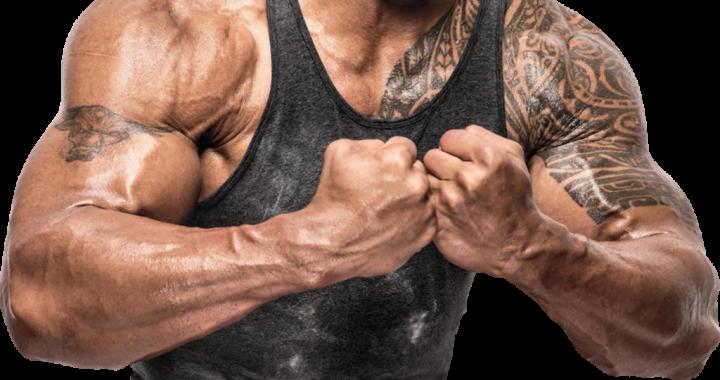 bodybuilding_PNG67
